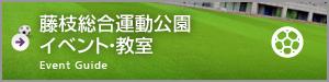 藤枝総合運動公園イベント・教室